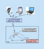 Implantable continuous glucose monitoring sensor